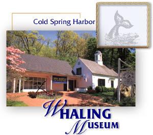 whaling museum.jpg