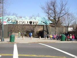 Feb-Zoo 2.jpg