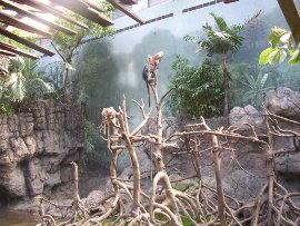 Feb-Zoo 3.jpg
