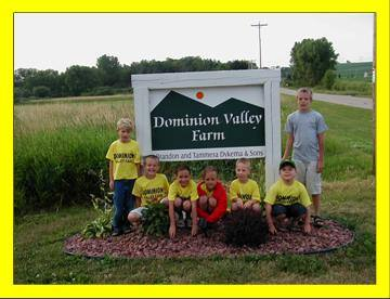 Dominion Valley Farm t-ball team 2006