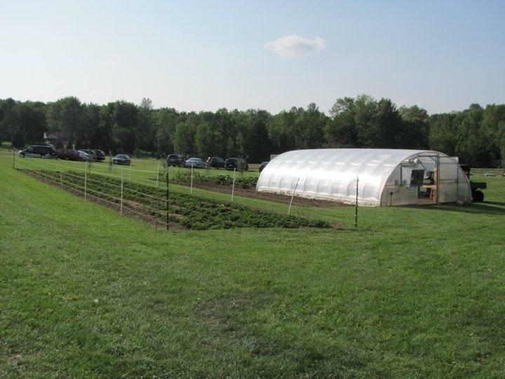Mueller's beautiful garden and greenhouse